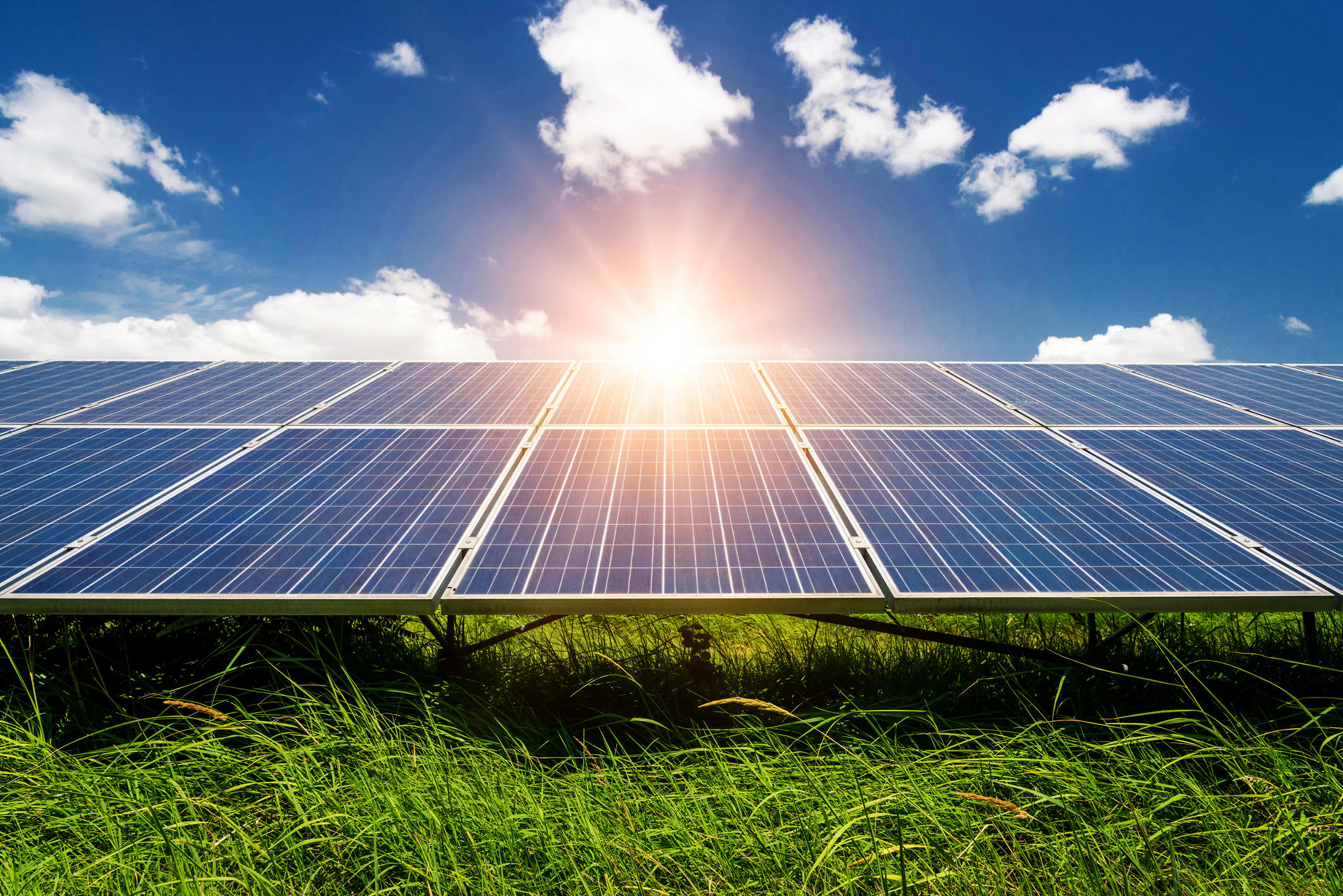 Discover the Best Solar Companies Today